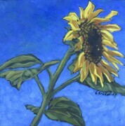 A Perfect Morning - Sunflower Study 1