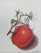 Tomato on the Vine 3