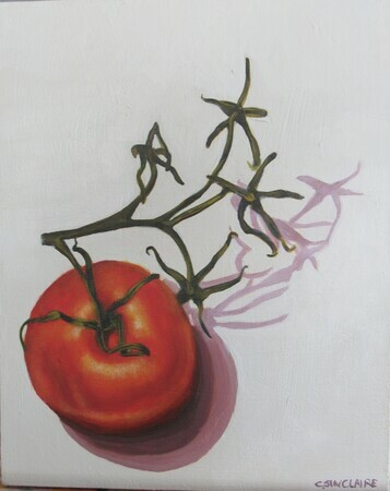 Tomato on the Vine 2