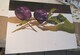 Process photo of Two Plums on Mosaic